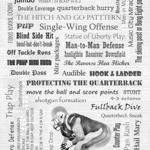 Begriffe aus dem American Football