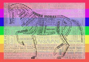 pferde bunt umrandet-