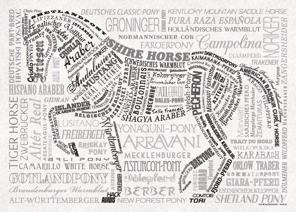 Poster Pferderassen